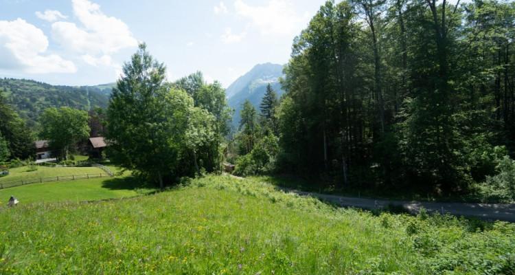 Gryon Immo vous propose un joli terrain dans un quartier résidentiel proche des commodités PRIX: 300.--/m2 CHF image 4