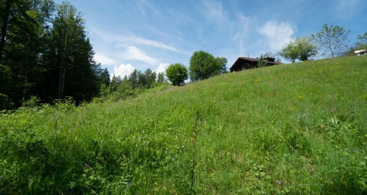 Gryon Immo vous propose un joli terrain dans un quartier résidentiel proche des commodités PRIX: 300.--/m2 CHF image 5