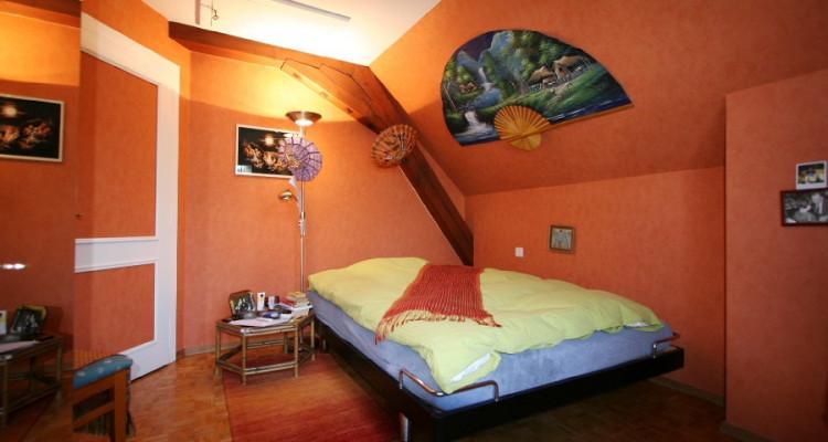 villa + appartement indépendant, dans son écrin de verdure avec calme, soleil et vue. image 10