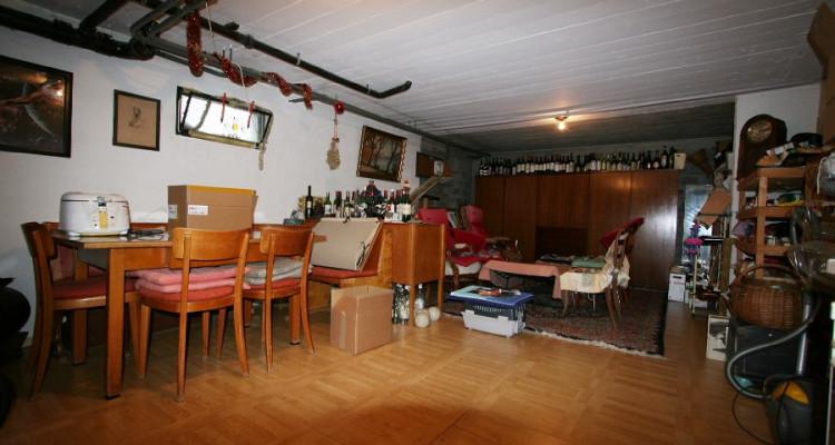 villa + appartement indépendant, dans son écrin de verdure avec calme, soleil et vue. image 11