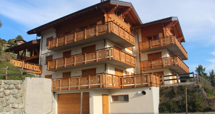 Appartement au pied des pistes image 2