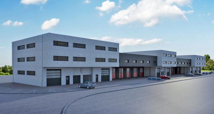 FOTI IMMO - Halle industrielle sur 2 niveaux. image 1