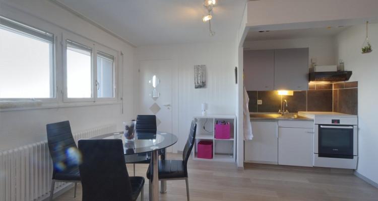 FOTI IMMO - Charmant appartement au pied des pistes ! image 2