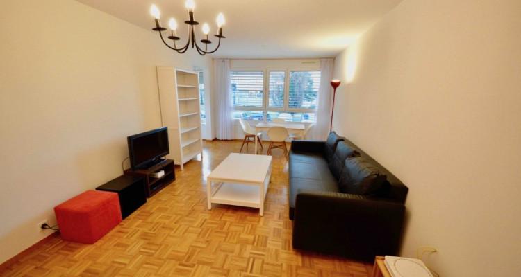 Appartement Meublé 3 Pièces avec jardin privatif à Lancy image 2