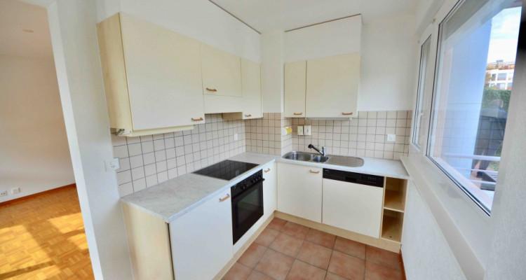 Appartement Meublé 3 Pièces avec jardin privatif à Lancy image 3