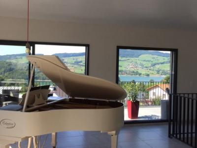 Villa individuelle avec vue sur le lac de la Gruyère et le Moléson image 1