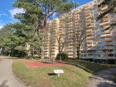 Appartement 5 pièces à Thônex avec locataire. image 1