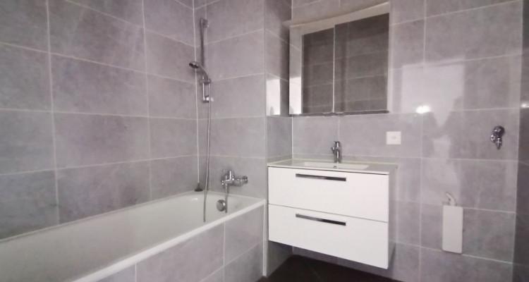 Appartement 4,5 pièces rénové à Meyrin image 4