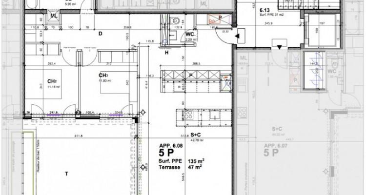 Appartement au coeur de Genève avec terrasse de 47 m2 image 10