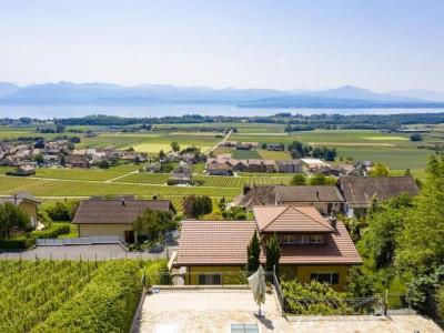 Magnifique villa individuelle sur la Côte vaudoise image 1