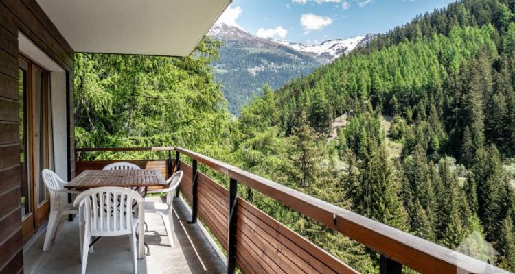 Magnifique appart 4,5 p / 3 chambres / 2 SDB / balcon avec vue image 9
