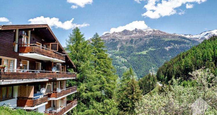 Magnifique appart 4,5 p / 3 chambres / 2 SDB / balcon avec vue image 10