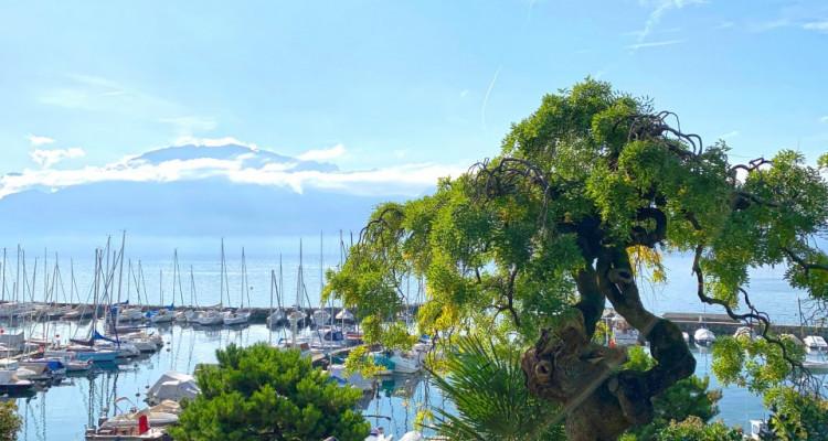 FOTI IMMO - Joli studio avec terrasse privée au bord du lac ! image 7