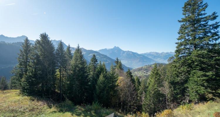 Home Story vous propose un magnifique 2 pièces en duplex à 150m de la liste de ski image 11